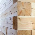 stěna z trámů 12 x 12 cm
